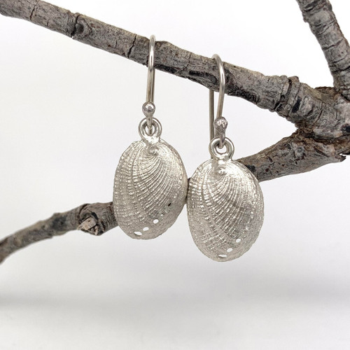 Sterling silver paua earrings, Bob Wyber.