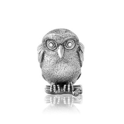 Sterling silver ruru, morepork  charm from Evolve New Zealand.