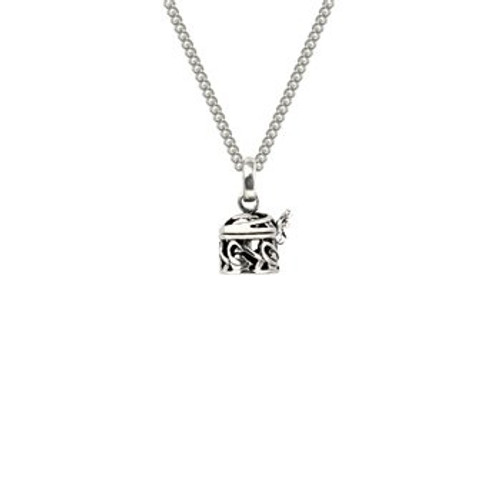 Sterling silver NZ treasures locket and chain necklace from Evolve New Zealand.