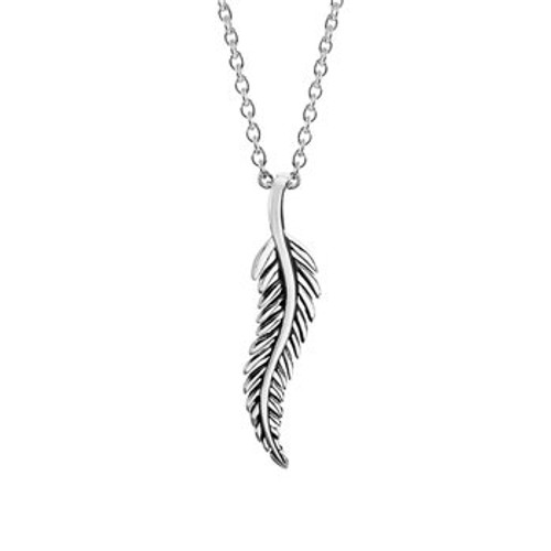 Stirling silver classic forever fern necklace from Evolve New Zealand.