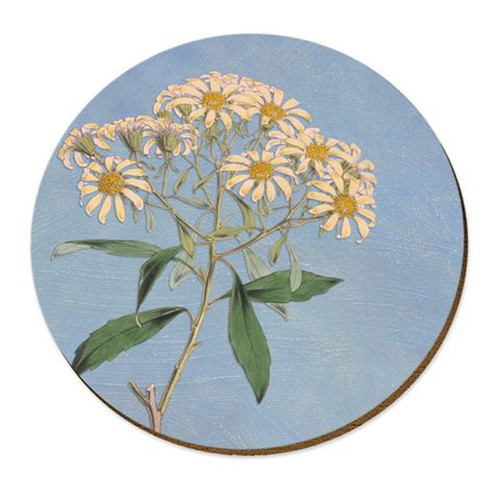 Kirk's daisy  cork backed placemat by NZ artist Tanya Wolfkamp.