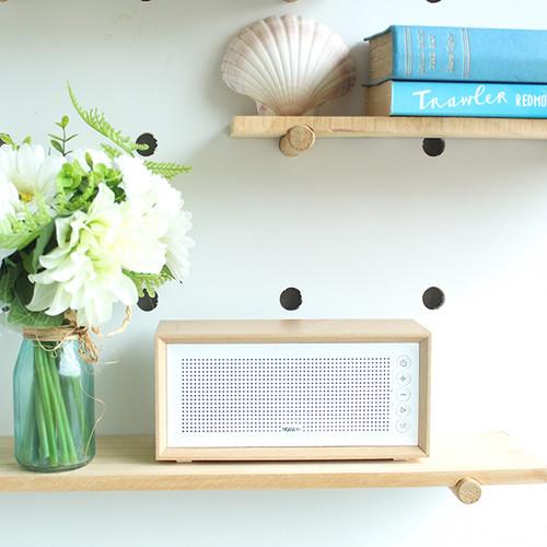 Vintage speaker from Moana Rd.