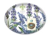 Michel Design Glass Soap Dish: Lavender Rosemary