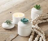 Ceramic Citronella Succulent Candle--CHOOSE DESIGN