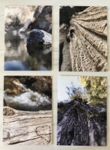 Sierra Photo Series Blank Greeting Cards--CHOOSE DESIGN