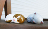Dog and Cat Salt & Pepper Set