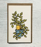 """Snail in Plant: Mini Card, 3.5""""x2"""""""