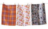 Costume Cat Pumpkins, Dish Towel set/3