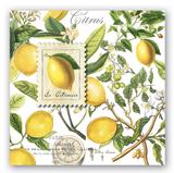 Lemon Basil Cocktail Napkins, set of 20
