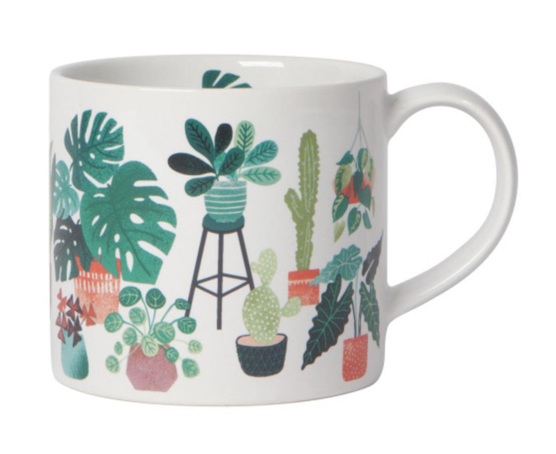 Let it Grow: Mug in a Box