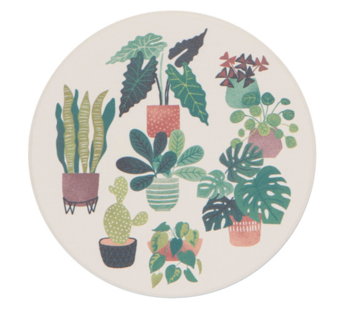 Let it Grow: Soak Up Coaster Set, set/4