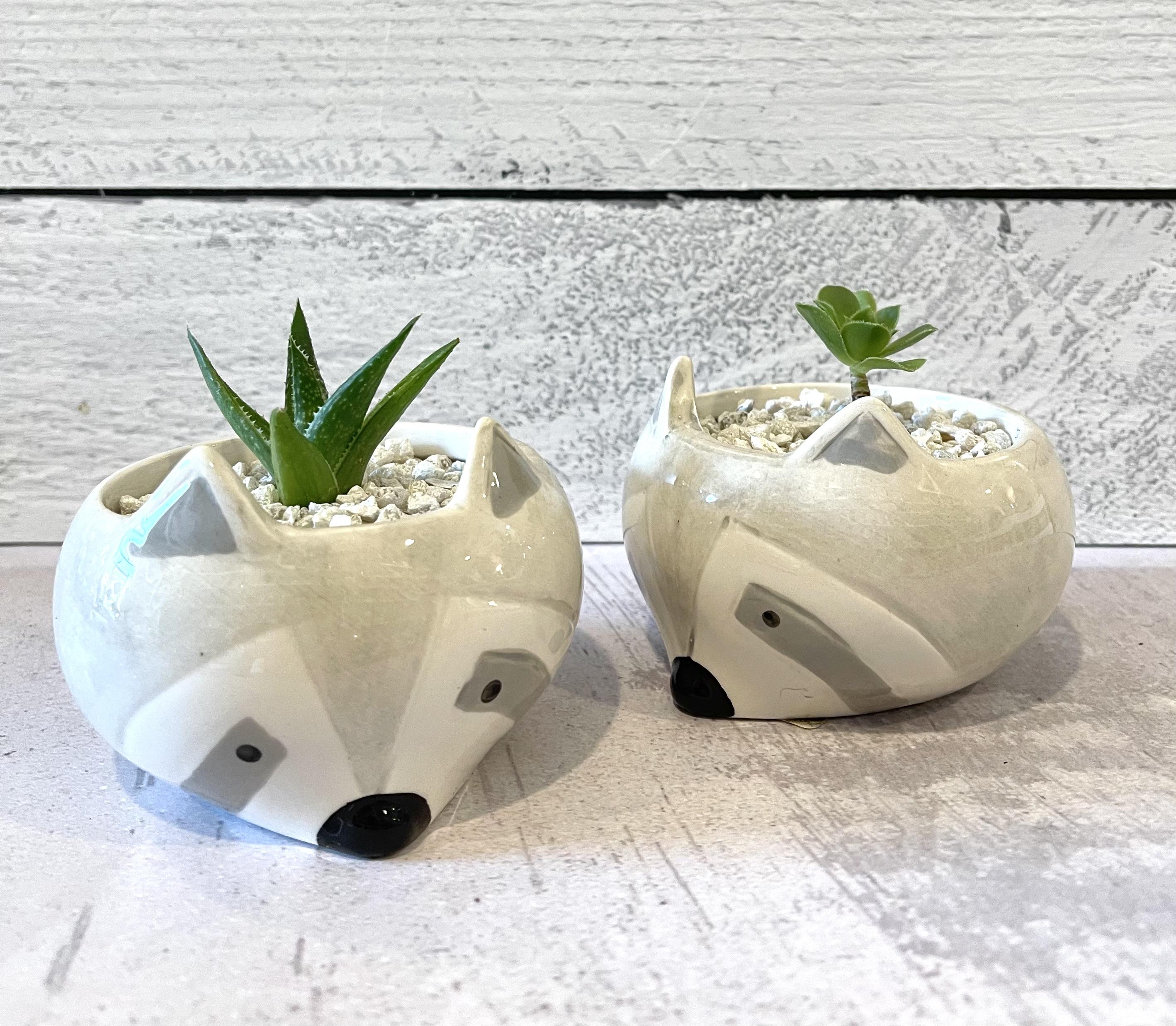 Tiny Animal Head Planter with Succulent--CHOOSE ANIMAL