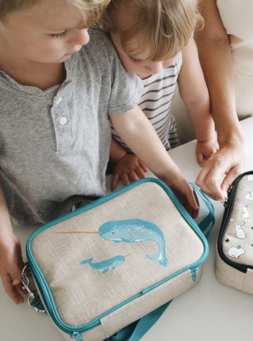 Teal Narwhal: SoYoung Lunch Box