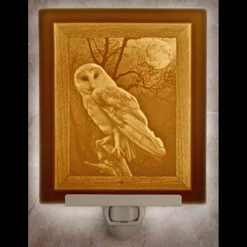 OWL-N270