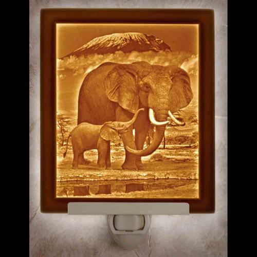 ELEPHANT & CALF-N298