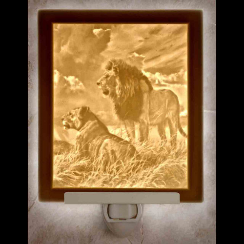 LIONS-N320