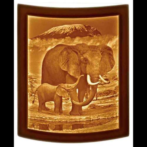 ELEPHANT & CALF-UR298