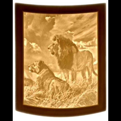 LIONS-UR320