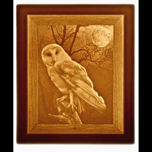 OWL-U270
