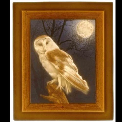 OWL-UC270