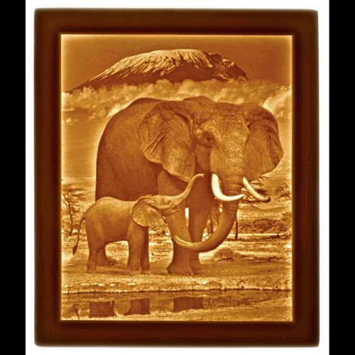 ELEPHANT & CALF-U298
