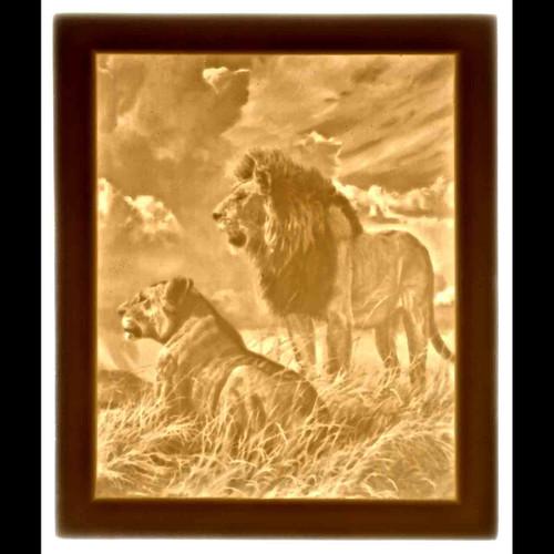 LIONS-U320