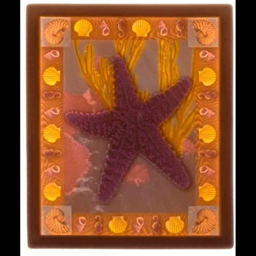STARFISH-UC185