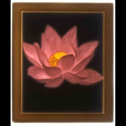 LOTUS FLOWER-UC271