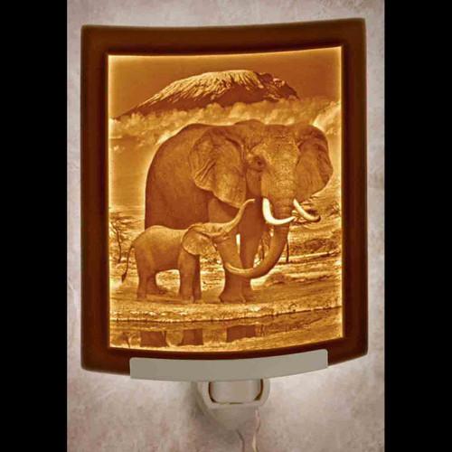 ELEPHANT & CALF-NR298