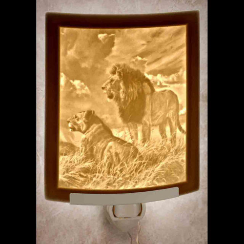 LIONS-NR320