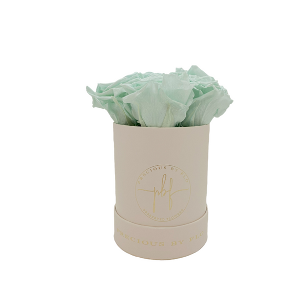 Fresh Mint Green Mediana Specialty Round Box-Beige