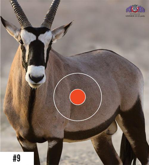 Gemsbok Safari Target
