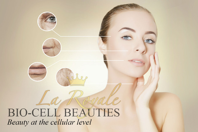 Bio-Cell Beauties: Beauty at the cellular level