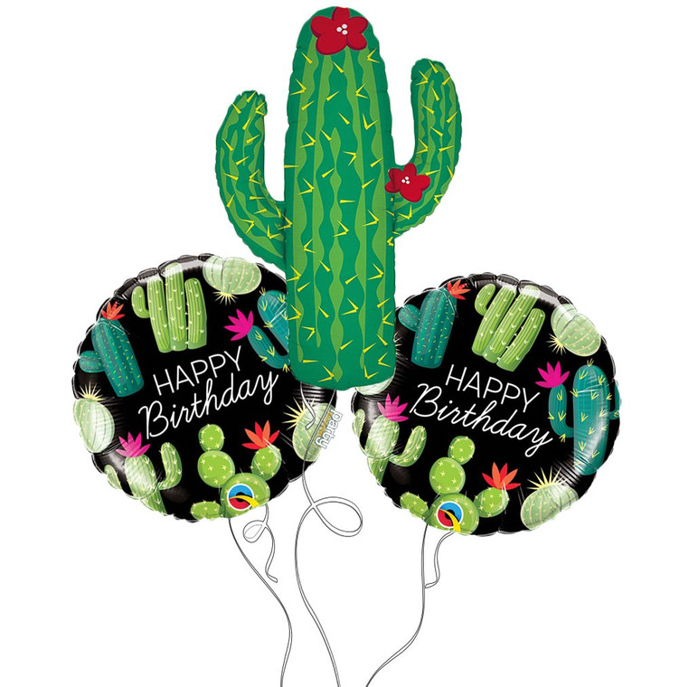 Succulent Cacti Happy Birthday Mylar Balloon Mini Bouquet
