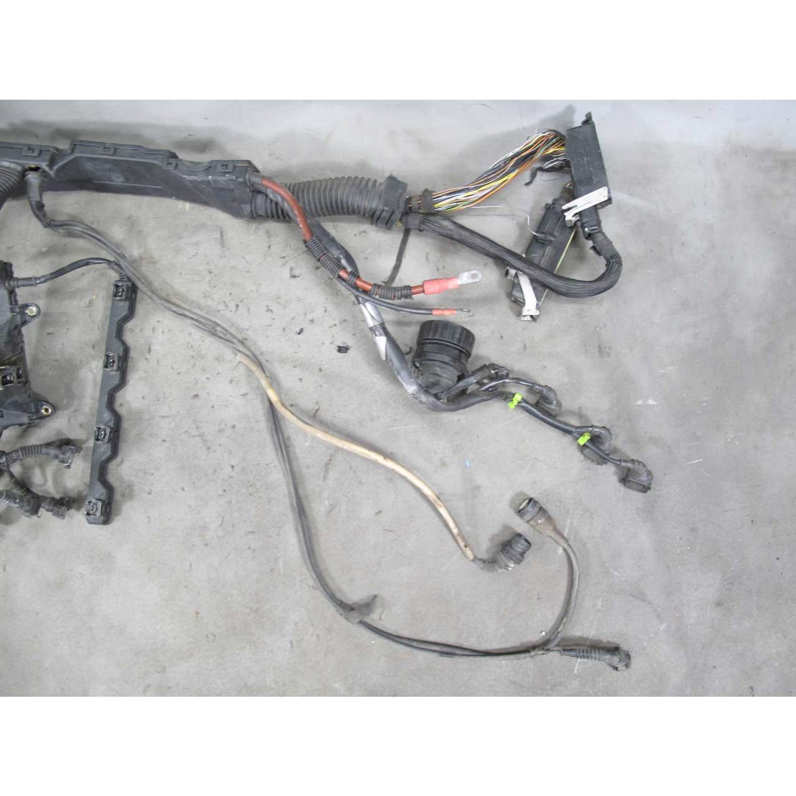 1997 Wire Bmw Harness 318tl - Wiring Diagrams Database learned-action -  learned-action.pisolagomme.it | 1997 Wire Bmw Harness 318tl |  | pisolagomme.it