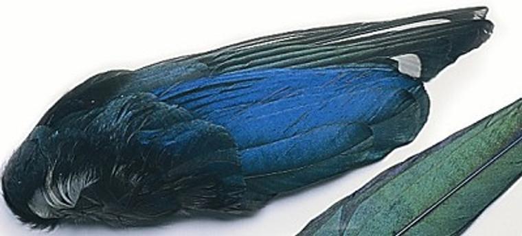 Veniard Magpie Whole Wings
