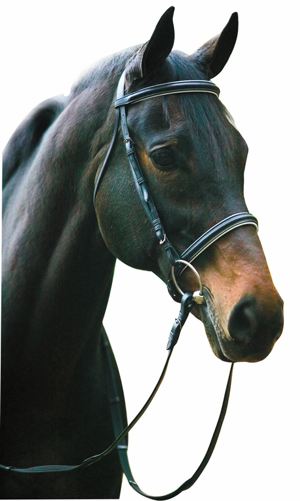Camelot Dressage Bridle with Black Leather Lining//Anti-Slip Reins Buckle Ends