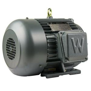 PEWWE5-36-184T 5HP, 3600 RPM, 208-230/460V, 3PH, 5.96 FLA, 184T