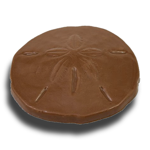 Chocolate Sand Dollar