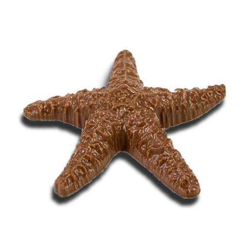 Chocolate Starfish (Large)