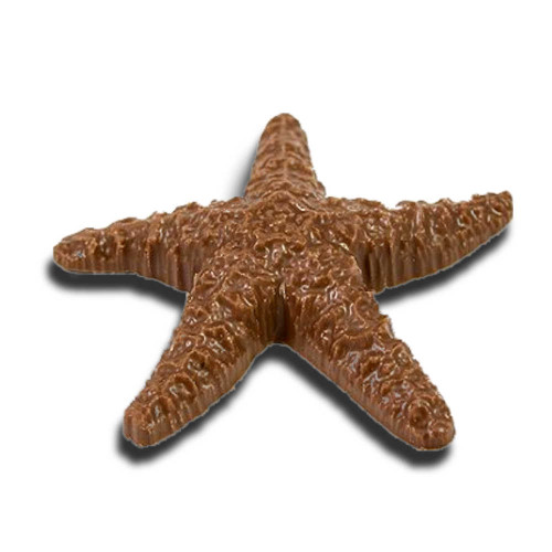 Chocolate Starfish (Large)