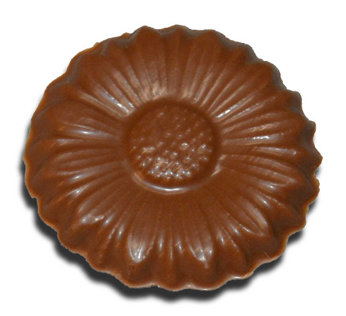 Chocolate Daisy (Small)