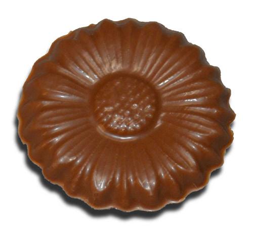 Chocolate Daisy (Small)