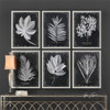 Foliage Set of 6