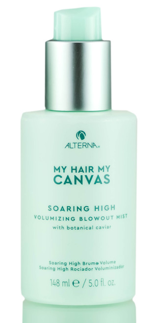 Alterna My Hair My Canvas Soaring High Vol Blowout Mist