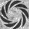 Lizard Skin Print Stencil Pack