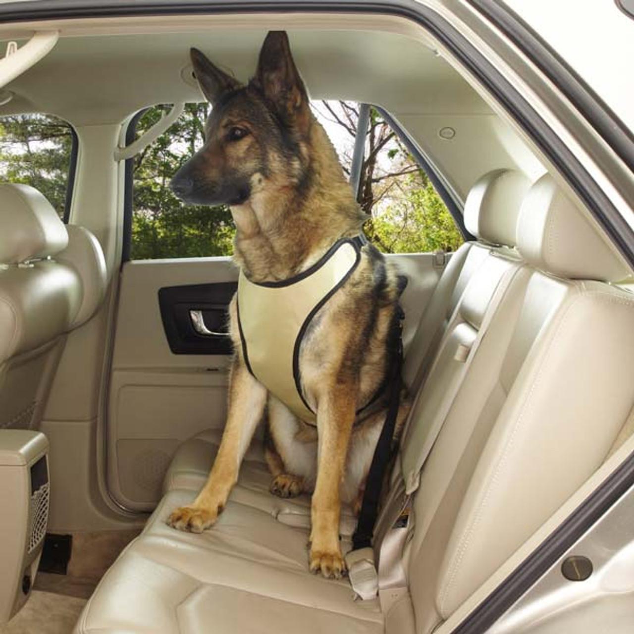 Dog Car Harness >> Ride Right Dog Car Harness