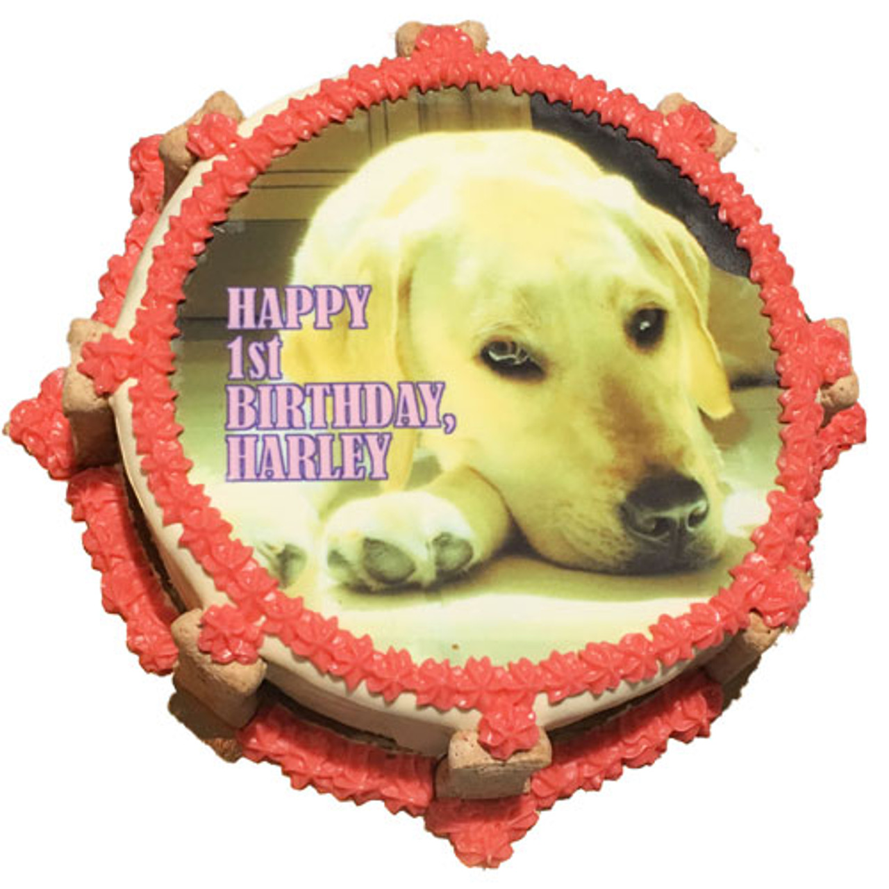 Stupendous Custom Photo Dog Cake Puppy Kisses Birthday Cards Printable Opercafe Filternl