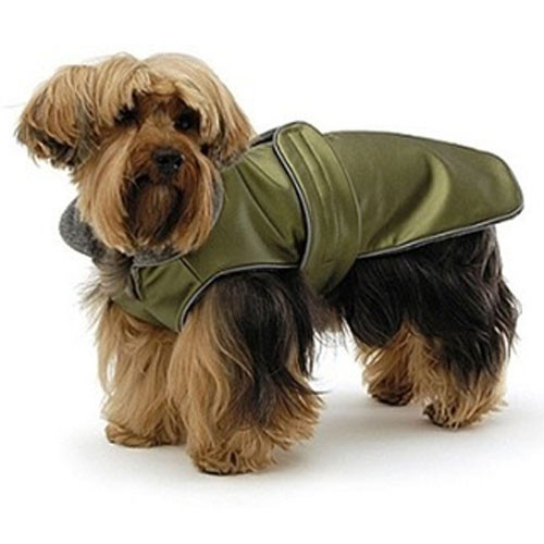 All Weather Dog Coat | Green