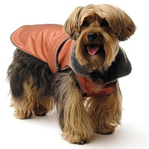 All Weather Dog Coat | Orange